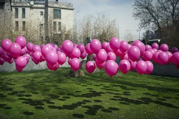 globos rosas